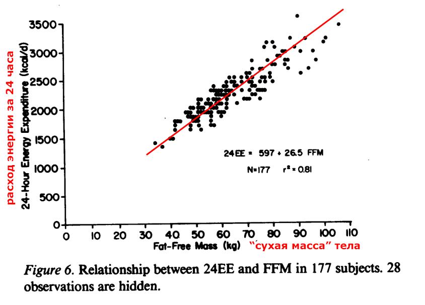 Зависимость энергопотребления в покое от сухой массы тела.