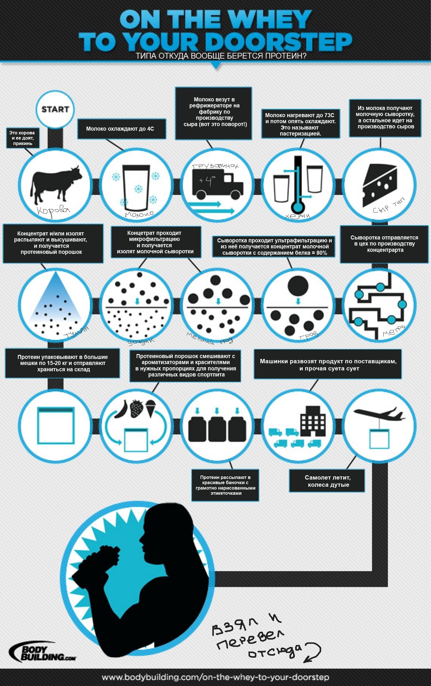Как производится спортивное питание